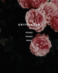 gryffindor | Tumblr