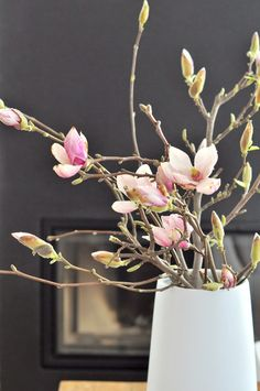 Pretty flowers | to brighten up any room