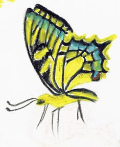 oil pastels Oil Pastels, Moth, Insects, Bee, Butterfly, Animals, Collection, Animales, Animaux