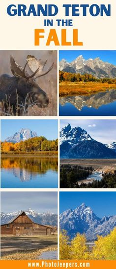 Outdoor Adventure at Grand Teton in the Fall - PhotoJeepers American National Parks, National Parks Usa, Grand Teton National Park, Usa Travel Guide, Travel Usa, Fall Vacations, Road Trip Usa, Honeymoon Cruise, Hiking Trips