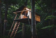 Slapen in een boomhut te Ryckevelde bos Vlaanderen - Boomkamp