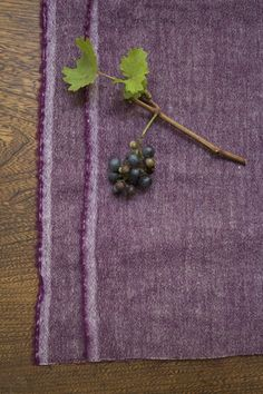 photo Linnet, Hemp, Cashmere, Pure Products, Wool, Collection, Cashmere Wool