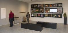 La exposición El Bosque Quemado se puede visitar completamente gratis en el Museo de la Evolución Humana, situado en Burgos