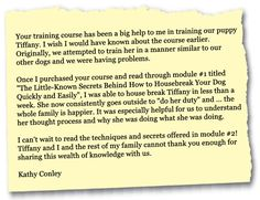 Parson Russell Terrier Training: Learn All About Training Parson Russell Terriers & Taking Care of Them