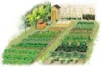 Légumes et potager - Planifier son potager durant l'hiver