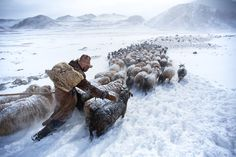 Kazakh-Mongolian nomad searching for graze in the Altai Mountains, Mongolia. . Ph. by Tariq Sawyer