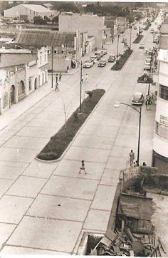 Años 1940. Caracas de Antaño. Avenida Principal del Cementerio, nos conduce al Cementerio General del Sur.