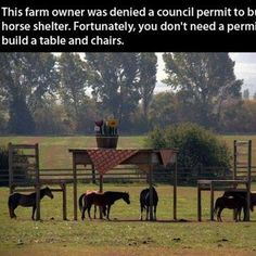Unique horse shelter. I hate it when the govt interferes too much.