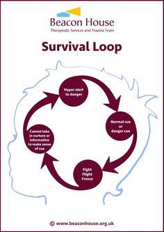 Survival Loop