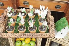 """Project Nursery - """"One"""" to Grown On First Birthday Party Potted Plants"""