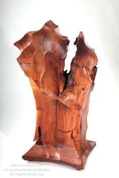 Lou Quallenberg peeks through the crack in the Mesquite Lectern Each new project usually brings with it a set of lessons and insigh. Mesquite Wood, Plastic Art, Wood Creations, Abstract Shapes, Wood Art, Sculpture Art, Natural Wood, Woodworking, Statue