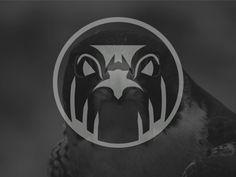 Arabic Falcon - Logo by Sebastián Pizarro