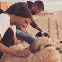 Me gusta que me mimen  #goldenretrieverpuppy #puppylove #dog #puppy #dogs_of_instagram  #dogsofinstagram #ilovemydog #dogoftheday #lovedogs #adorable #doglover #instapuppy #instadog #bestwoof #weekend #surftrip #hossegor #quickprofrance