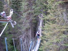Whitefish, MT - Walking in the treetops. If you are in the area you need to try this! So much fun and a great view looking over the town of Whitefish!!