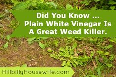 Tackle Weeds In Garden With Vinegar The following is a HBHW reader tip. Thanks so much for sharing this all natural weed killer tip.  er