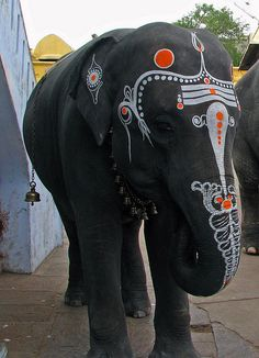 Painted elephants in India