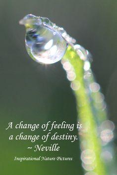 """A change of feeling is a change of destiny."" - Neville"