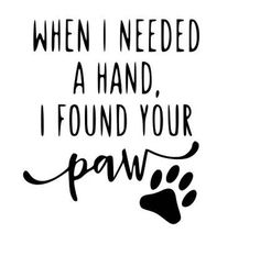 When I needed a hand I found your paw svg file Cat Quotes, Animal Quotes, Puppy Quotes, Doodle Quotes, Crazy Cat Lady, Crazy Cats, I Found You, Dog Signs, Dog Memorial