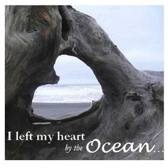 Left my heart by the ocean