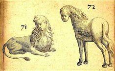 De Monstrorum Caussis, Natura, et Differentiis, Libri Duo