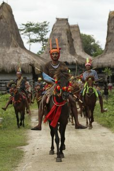 Ancient war game  || Indonesia   Sumba