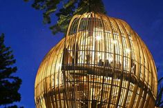 In my endless trawling for new projects that meld food and design, I came across the Yellow Treehouse Restaurant—an architect-designed eatery near Auckland, New Zealand, perched over 30 feet above the ground in a redwood tree. Tree Restaurant, Restaurant Design, Restaurant Ideas, Auckland, Cool Tree Houses, Yellow Tree, Tree House Designs, Unique Restaurants, Wooden Tree