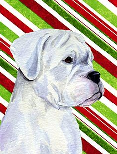 Caroline's Treasures SS4578CHF Boxer Candy Cane Holiday Christmas Flag Canvas, Large, Multicolor -- Amazing product just a click away  : Garden Christmas Decorations