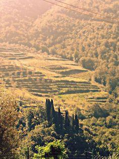 Tobbiana Tuscany
