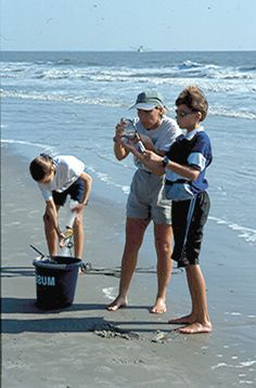 Every year over two million visitors flock here to enjoy the warm sunshine and more than 12 miles of beaches that encircle Hilton Head.  Beachcombing is a natural activity for all ages. Have fun se...