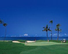Golf Course at 5 star hotel: Sheraton Denarau Villas. This hotel's address is: Denarau Island Denarau Island Denarau Island and have 82 rooms Islands In The Pacific, Pacific Ocean, Plantation Island, Golf Hotel, Fiji Travel, Fiji Islands, Romantic Honeymoon, Island Resort, Treasure Island
