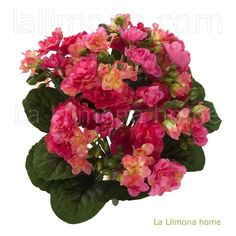 Plantas artificiales con flores. Planta artificial kalanchoe cereza 30