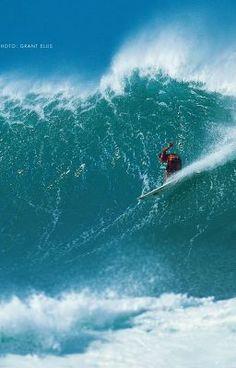 "Read ""surfers dream - Kapitel 1"" #wattpad #abenteuer"
