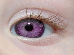 Los Ojos Más Hermosos y Extraños Del Mundo - YouTube