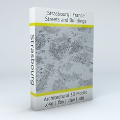 Strasbourg Streets and Buildings Architectural 3D Model