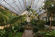 Visitar o Jardim Botânico de Coimbra é como fazer uma viagem por todo o planeta sem sair do mesmo local, já que aqui se encontram plantas vi...