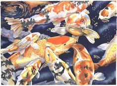 Japanese Koi Wall Art - Painting - Koi Pond by Cheryl Allen Japanese Gangster, Koi Kunst, Koi Art, Underwater Painting, All Japanese, Fish Drawings, Still Life Photos, Art Pages, Art For Sale