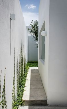 Image 9 of 42 from gallery of / ADI Arquitectura y Diseño Interior. Photograph by Oscar Hernández Landscape Design, Garden Design, House Design, Side Yard Landscaping, Design Exterior, Side Garden, Tropical Houses, House And Home Magazine, Home Interior