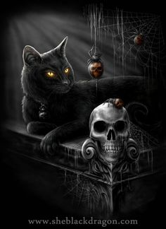 Skulls:  #Skull and black cat.