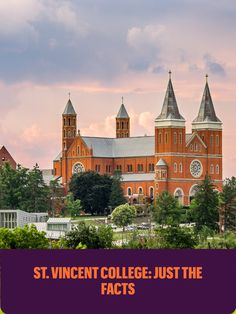 Check out FAQs, stats and other exciting info about St. Vincent College.   Saint Vincent College is an educational community rooted in the tradition of the Catholic faith, the heritage of Benedictine monasticism and the love of values inherent in the liberal approach to life and learning. Catholic Colleges, Saint Vincent, Need To Know, Roots, Homeschool, Faith, Community, Education, Mansions