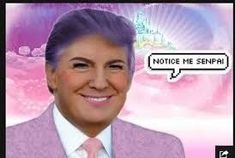 Donald Trump in kawaii makeup and glitter is downright adorable. Dead Memes, Dankest Memes, Funny Laugh, Hilarious, Donald Trump Funny, Kawaii Makeup, Sad Day, Guys And Girls, Funny Posts