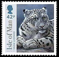 Isle of Man BIGCATS / Snow Leopard