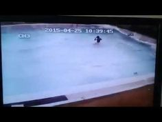 Earthquake Nepal (Swimming pool) - YouTube