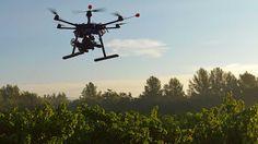 Un nuevo dron que planta árboles!