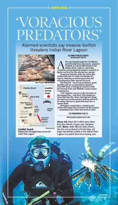 Lionfish - Voracious