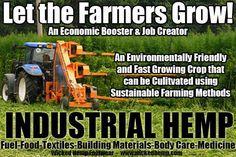 Industrial Hemp Seed Info | Northwest Cannabis Coalition