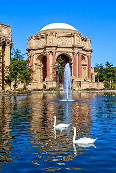 There is much more to San Francisco other than the iconic Golden Gate Bridge or the vintage cable cars. There's a little bit of everything for all, don't miss any chance to explore this wonderful city! ★ Explore more: http://glaminati.com/what-to-do-in-san-francisco/?utm_source=Pinterest&utm_medium=Social&utm_campaign=what-to-do-in-san-francisco&utm_content=photo2