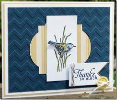 Vanessa's Card Studio - using new hostess set!