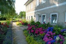Nejkrásnější statek Hydrangea, Mansions, House Styles, Plants, Home Decor, Farm Cottage, Nice Asses, Decoration Home, Manor Houses