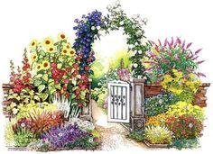Схема посадки цветов у калитки