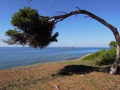 365 Faro di Punta Licosa - Castellabate - Parco Nazionale del Cilento e Vallo di Diano - Salerno - Campania. Foto di Vincenzo Borzacchiello
